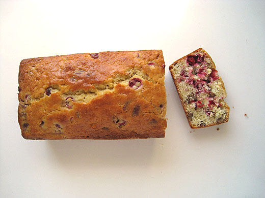 Cooks Illustrated Countertop Convection Oven : Lottie + Doof ? Cranberry Pecan Bread (Cranberries are here!!!)