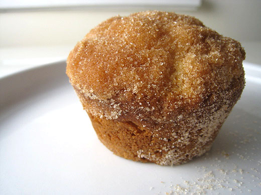 Doughnut Muffins Recipe — Dishmaps