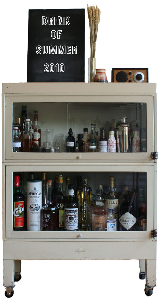 Lottie doof wanted a few good drinks for How to build a mini bar cabinet